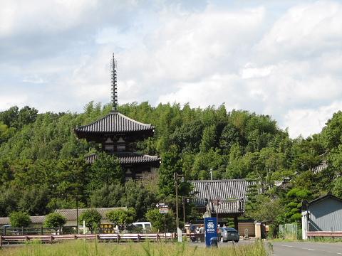 田んぼの中の法起寺